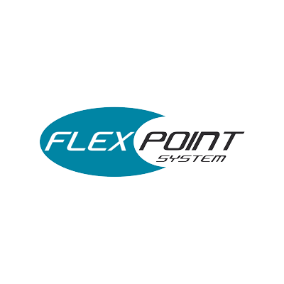 flex point system icon 2